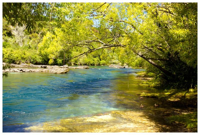 River at Reids Farm