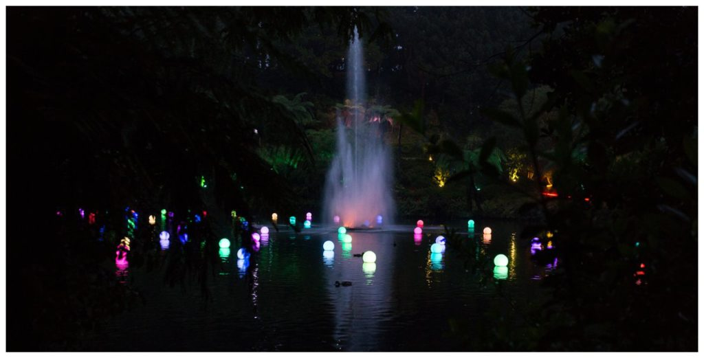New Plymouth Festival of Lights