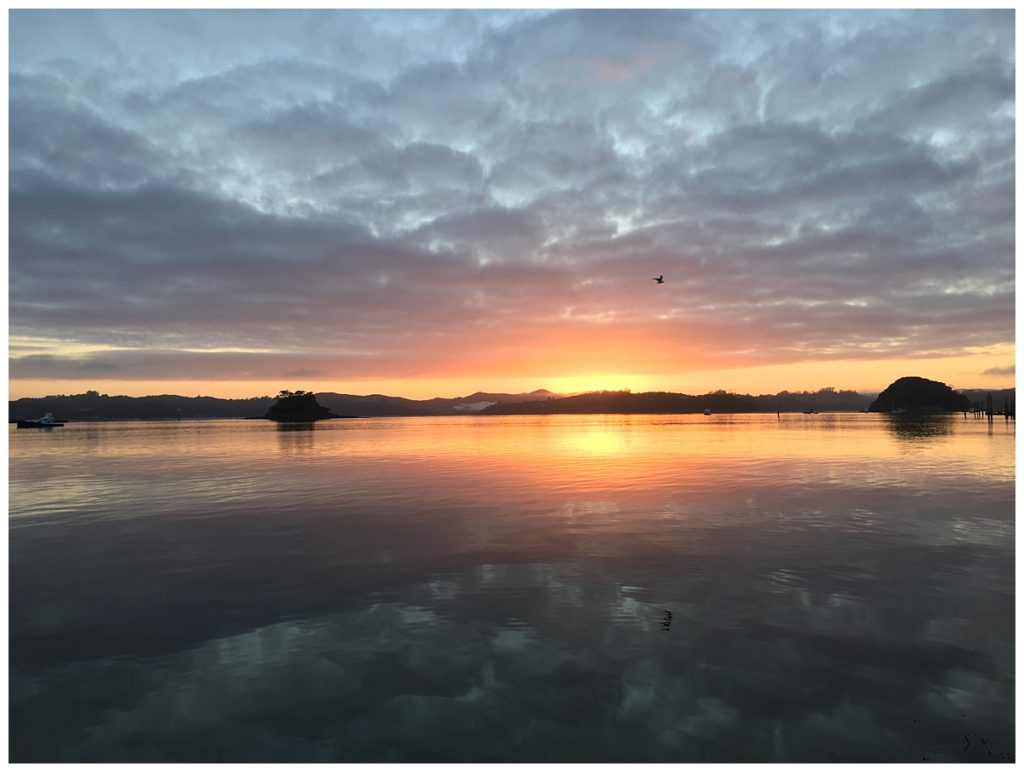 Paihia Sunrise
